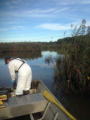 OU-2 Wetlands Sampling at Red Lion Creek