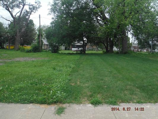 Example of Yard after cleanup